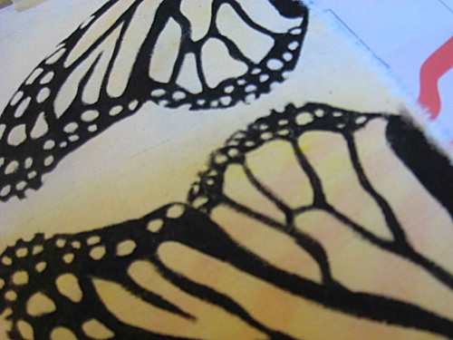 The black outlines of the butterfly's wing design